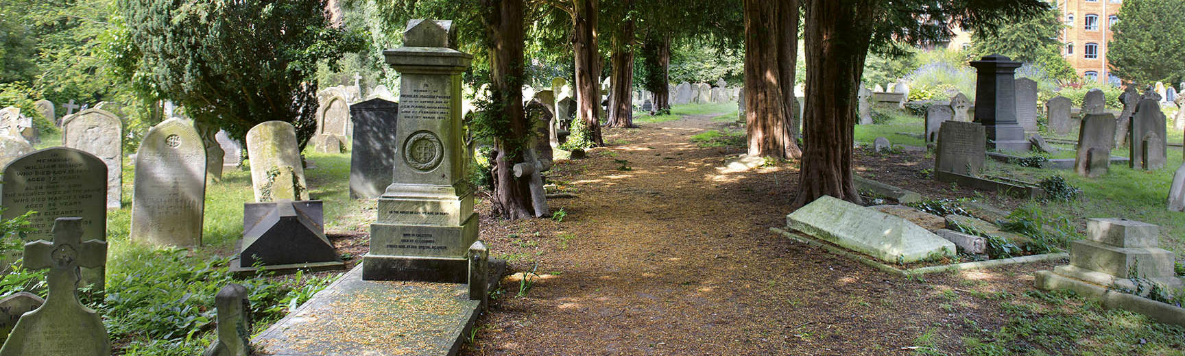 A photograph of a cemetery - there is a path in the middle with gravestones on either side