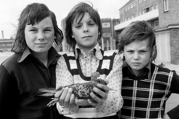 A black and white photograph of three young boys looking directly at the camera, the boy in the centre holds a pigeon