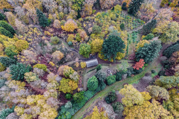 A drone view of the Botanic Gardens in Oxford - a green grass path winds along the ground surrounded by trees and bushes in colours from yellow to green